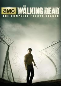 Walking Dead, The - Season 4 (2014)(DVD-R)