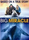 Big Miracle (2012)(DVD-R)