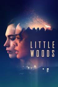 Little Woods (2019)(DVD-R)
