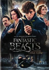 Fantastic Beasts and Where to Find Them (2017)(Deluxe)(DVD-R)(2Disc)