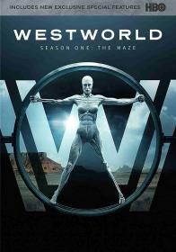 Westworld - Season 1 (2018)(DVD-R)