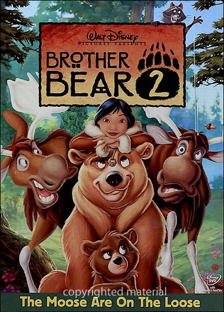 ძმა დათვი 2